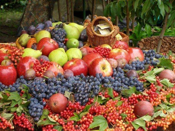 Полезные фрукты и ягоды при подагре
