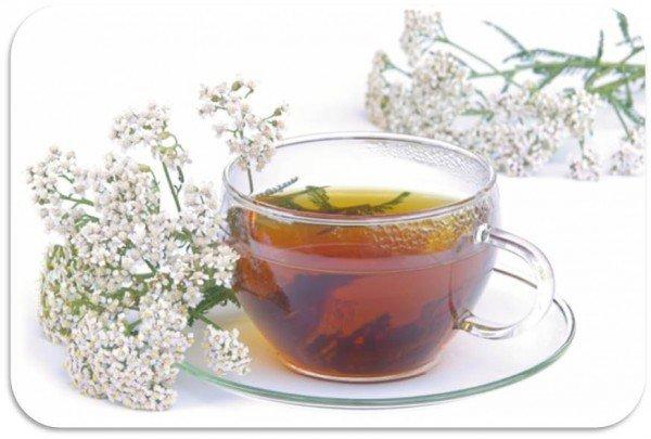 Чай из тысячелистника