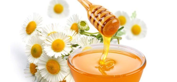 Ромашка и мёд в миске с деревянной лопаточкой