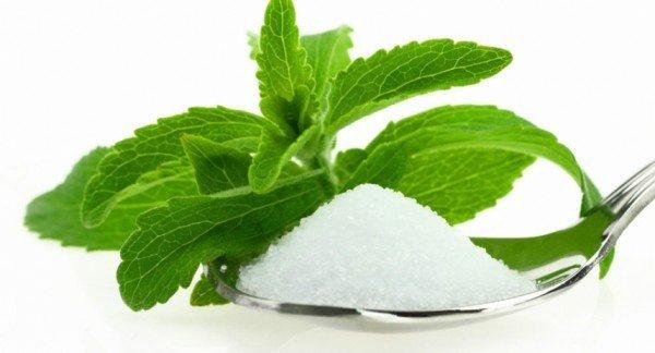 Растение стевия и сахар