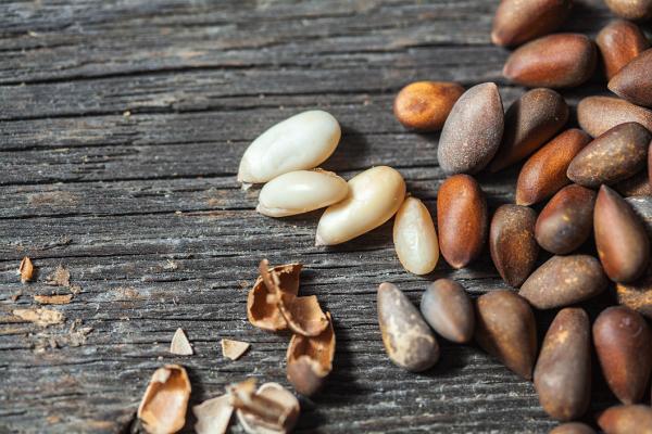 Кедровые орехи и скорлупа от них