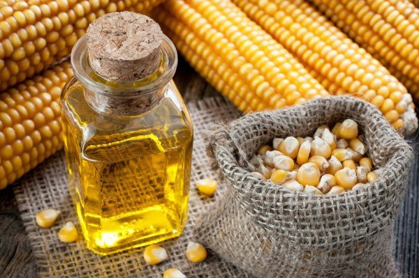 Кукуруза и масло из неё