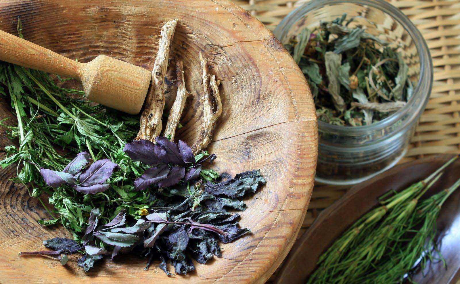 Народное лечение остеомиелита – рецепты ЗОЖ