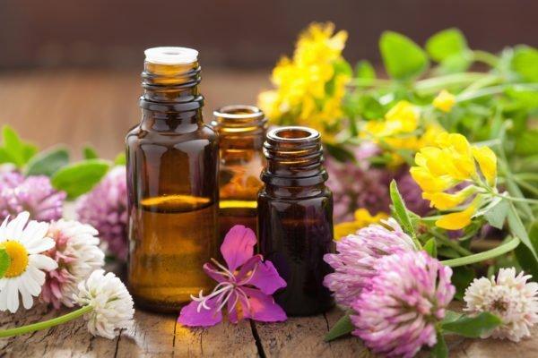 Растения и масла