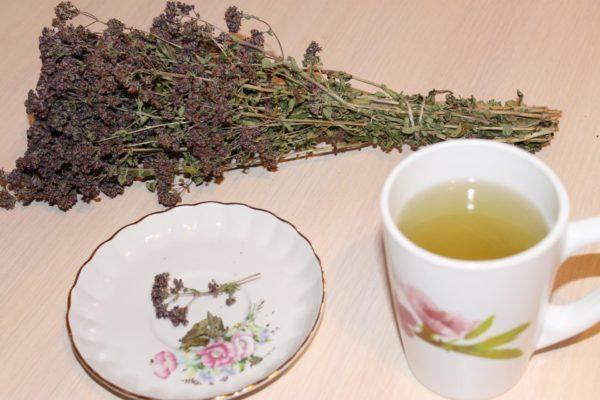 Чай из сушёной душицы
