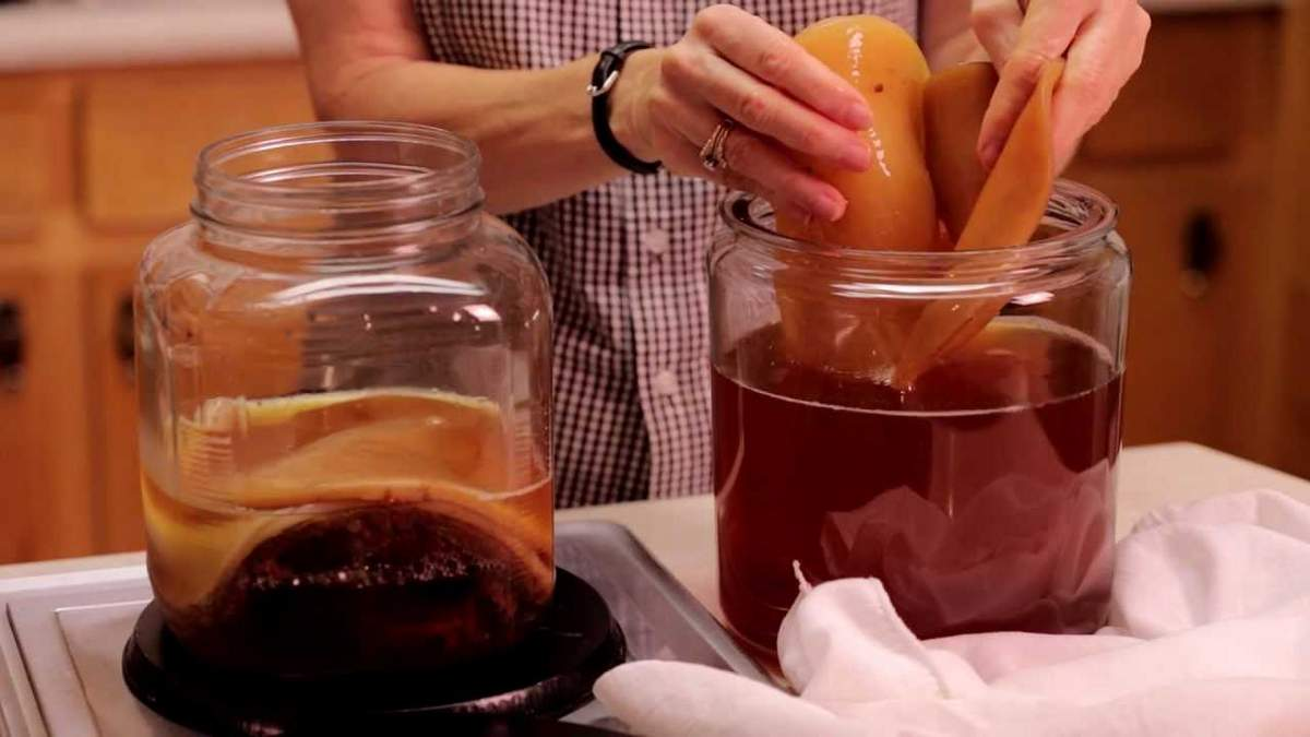 Напиток гриб в домашних условиях 200