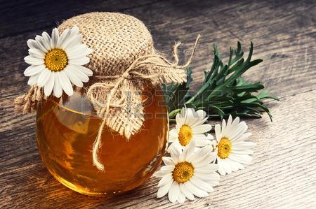 Цветки ромашки с мёдом