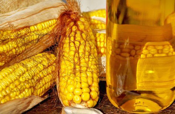 Кукуруза и масляный экстракт