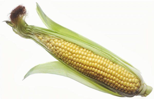 Початок кукурузы очищенный