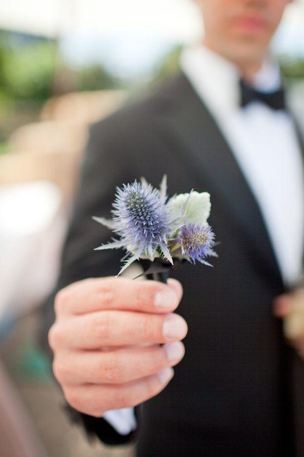 Цветы чертополоха в руке у молодого человека