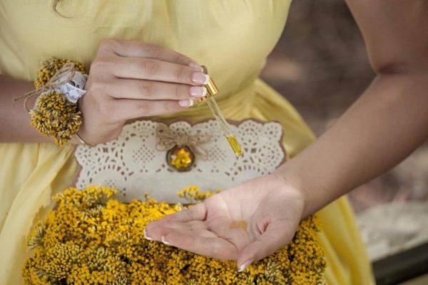 Цветы цмина и капли его масла в ладони