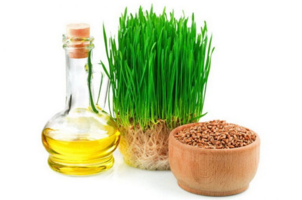 Зародыши и ростки пшеницы