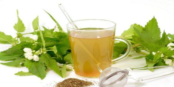 Травы и чашка чая