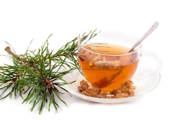 Веточка сосны, чашка чая и почки на блюдце