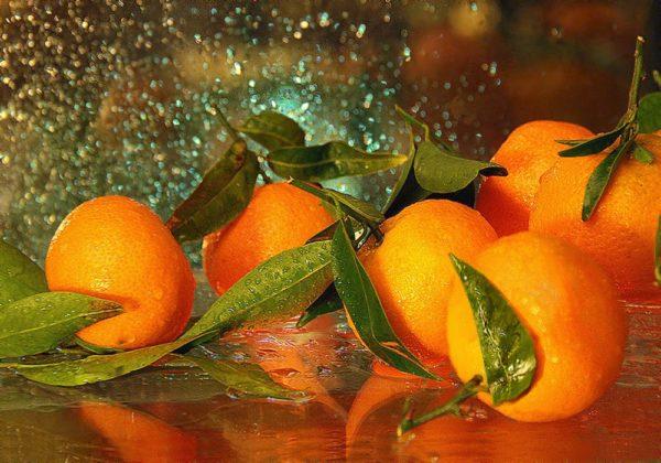 Несколько мандаринов с веточками на стеклянной поверхности