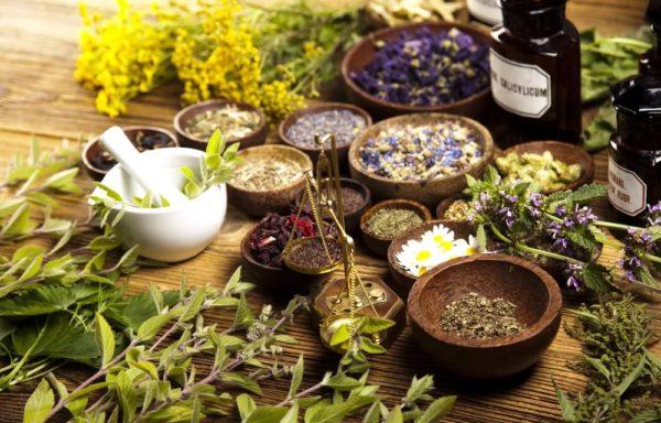 Лекарственные травы в чашах на столе
