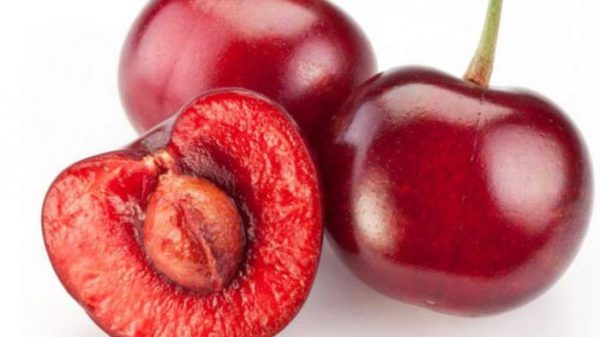 Плоды вишни крупным планом
