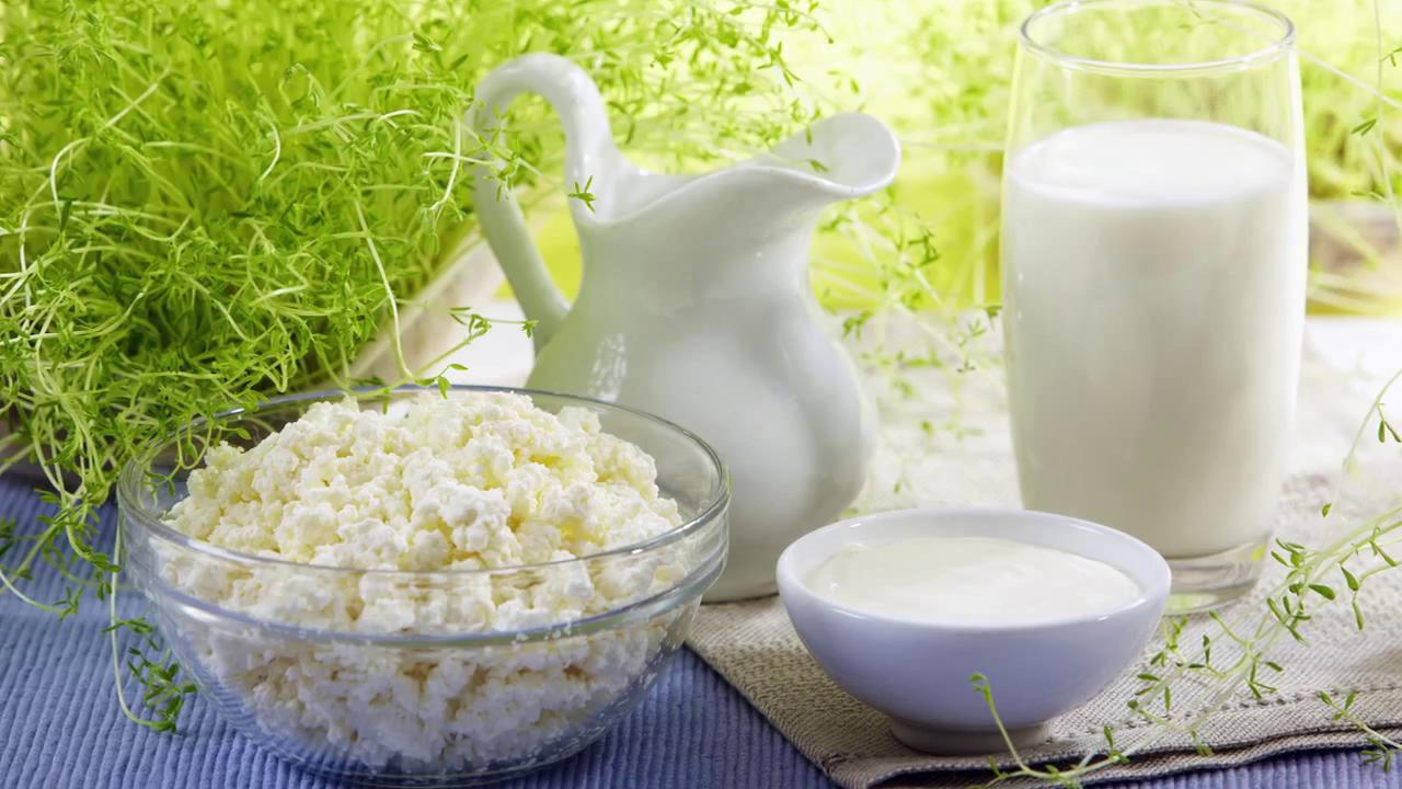 Молочные продукты ускорят процесс лечения подагры
