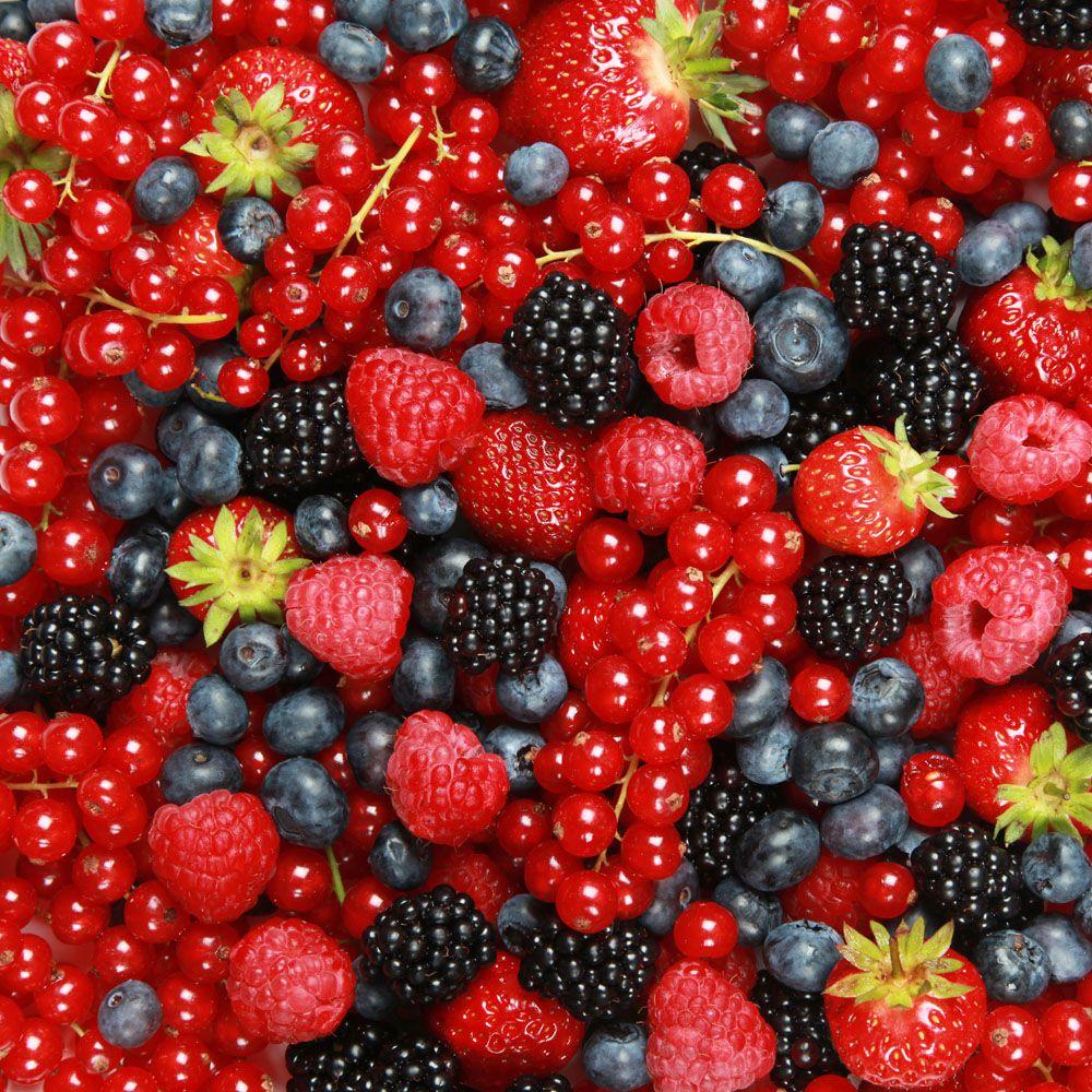 Клюква, брусника и другие полезные ягоды при пиелонефрите