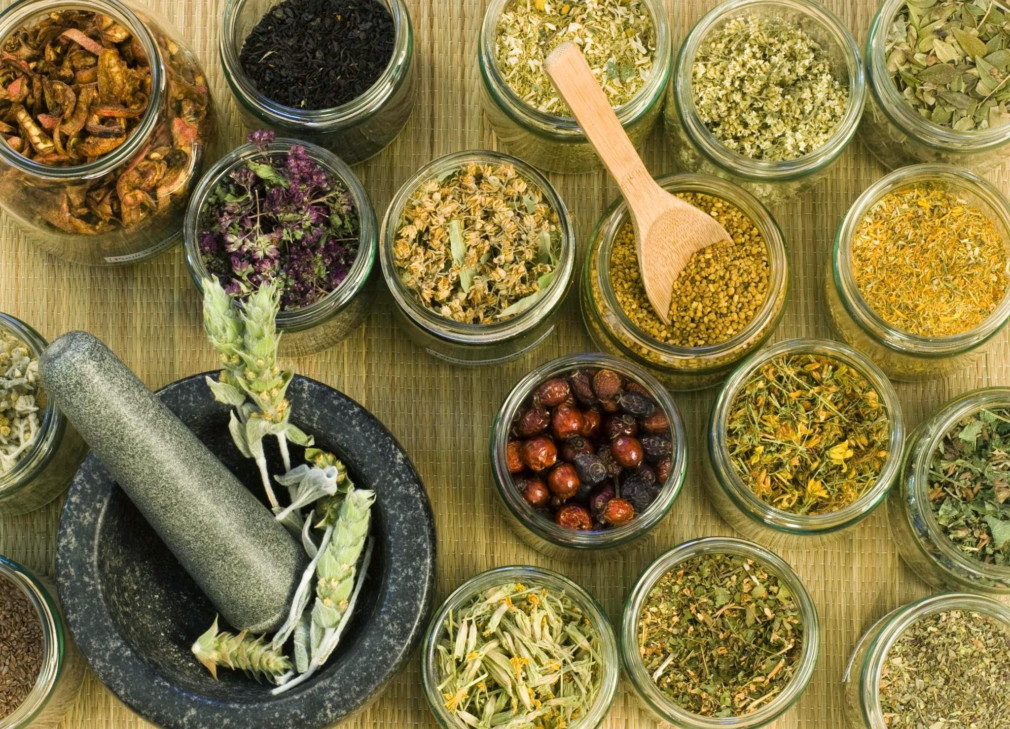 Избавьтесь от мастопатии с лекарственными травами и растениями