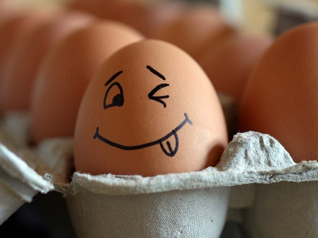 Польза яичной скорлупы для здоровья и красоты